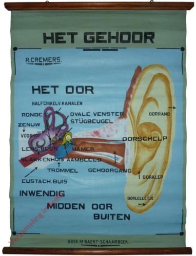 Het gehoor